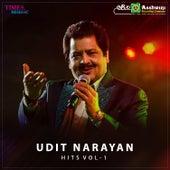 Udit Narayan Hits, Vol. 1 de Udit Narayan
