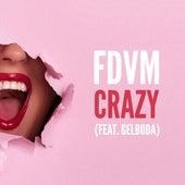 Crazy (feat. Gelbuda) de Fdvm