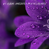 # 1 Album: Ambiente Para Relajarse von Lluvia para Dormir