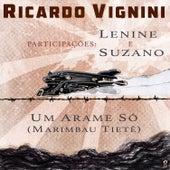 Um Arame Só (Marimbau Tietê) de Ricardo Vignini