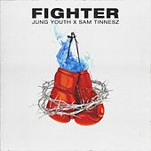 Fighter by Jung Youth