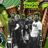 Vinicius Chagas e Os Chocoboys de Vinicius Chagas