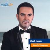 Kouly Shayaan by Wael Jassar