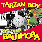 Tarzan boy: the world of Baltimora by Baltimora