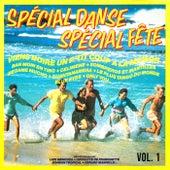 Spécial danse, spécial fête, Vol. 1 by Multi Interprètes