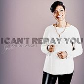 I Can't Repay You de Shannon Wright