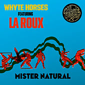 Mister Natural by Whyte Horses