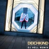 Richtig Gutes Zeug (DJ Hell Remix) by Deichkind