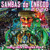 Sambas De Enredo Das Escolas De Samba 2020 de Various Artists