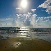 Aquarius Rising de David Rosenblad