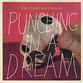 Punching In A Dream de The Naked And Famous