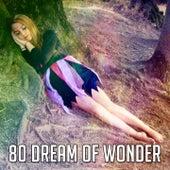 80 Dream of Wonder de Sleepicious