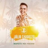 Respeita Meu Piseiro! de Julio Cardozzo