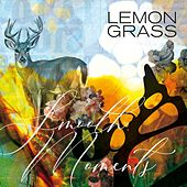 Smooth Moments de Lemongrass