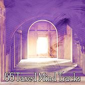 66 Taxed Mind Tracks von Lullabies for Deep Meditation