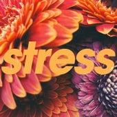 Stress by Tycho