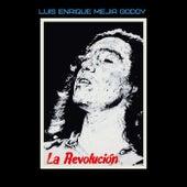 La Revolución de Luis Enrique Mejia Godoy