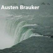 The Thin Ice by Austen Brauker