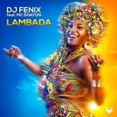 Lambada (feat. Mc Shayon) von Dj Fenix