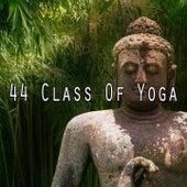 44 Class of Yoga de Meditación Música Ambiente