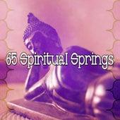 65 Spiritual Springs de Zen Meditate