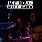 Nice Guy by Cam Wild
