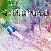 49 A Life of Relaxation de Spa Relaxation