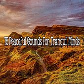 75 Peaceful Sounds for Tranquil Minds by Ambiente