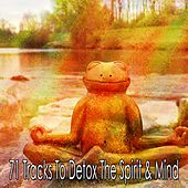 71 Tracks to Detox the Spirit & Mind de Deep Sleep Meditation