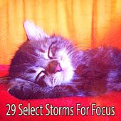 29 Select Storms for Focus de Thunderstorm Sleep