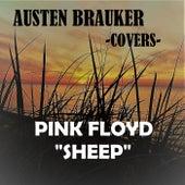 Sheep by Austen Brauker