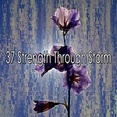 37 Strength Through Storm de Thunderstorm Sleep