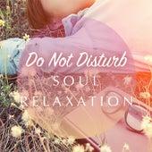 Do Not Disturb Soul Relaxation de Various Artists