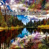 69 Naturally Beautiful Tracks for Calm by Relaxing Mindfulness Meditation Relaxation Maestro
