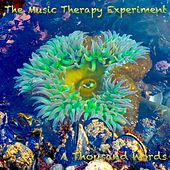 A Thousand Words by The Music Therapy Experiment