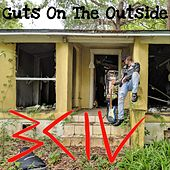 Guts on the Outside by Bciv