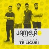 Te Liguei by Jamelão