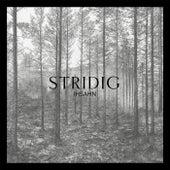 Stridig by Ihsahn