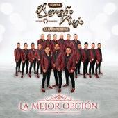 La Mejor Opción de Banda Rancho Viejo De Julio Aramburo La Bandononona