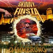 Spielerdämmerung (Mixtape) von Skinny Finsta