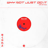 Why Not Just Do It by Silk