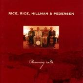 Running Wild von Rice, Rice, Hillman & Pedersen