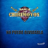 No Puedo Olvidarla de Banda los Chirimoyos