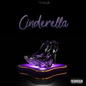 Cinderella de Didda Joe