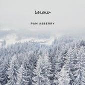 Snow de Pam Asberry