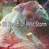 26 Realm of Rest Storm by Rain Sounds and White Noise