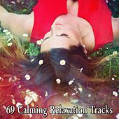 69 Calming Relaxation Tracks by Sounds Of Nature