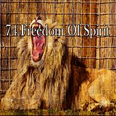 74 Freedom of Spirit de Water Sound Natural White Noise