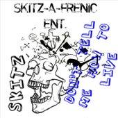 Skitz-A-Frenic Nation de Skitz