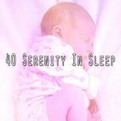 40 Serenity in Sleep de Best Relaxing SPA Music